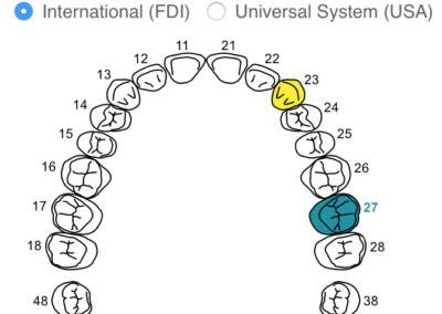 NOW HERE: Interactive Odontogram