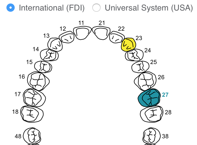 NOW HERE: Interactive Odontogram